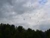 Sternennacht im Zwönitztal Tagfeuerwerk 25 06 2017